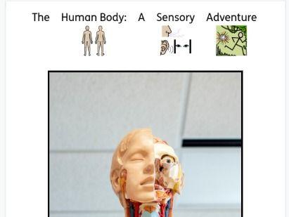 Human Body Sensory Story