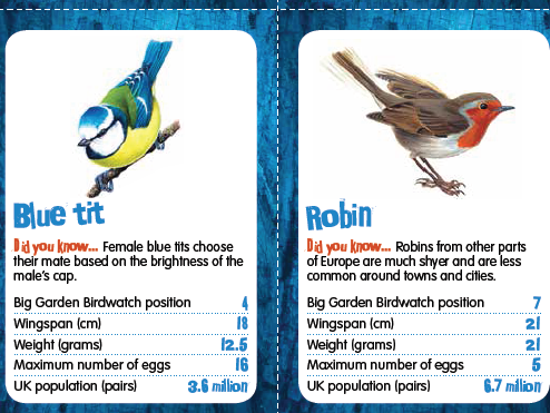Big Card Birdwatch - Top Trumps style game