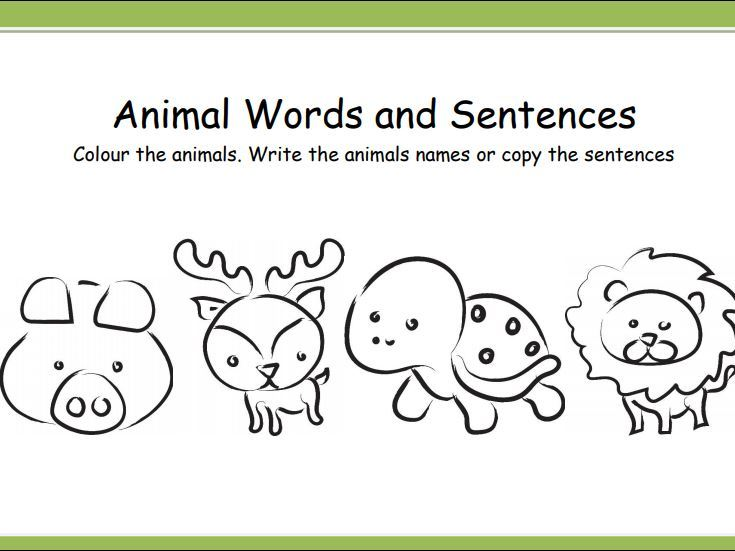 Animal Word and Sentence Colouring Cards