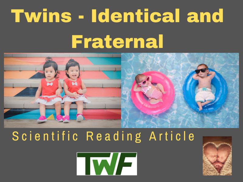 Twins - Identical and Fraternal - Reading