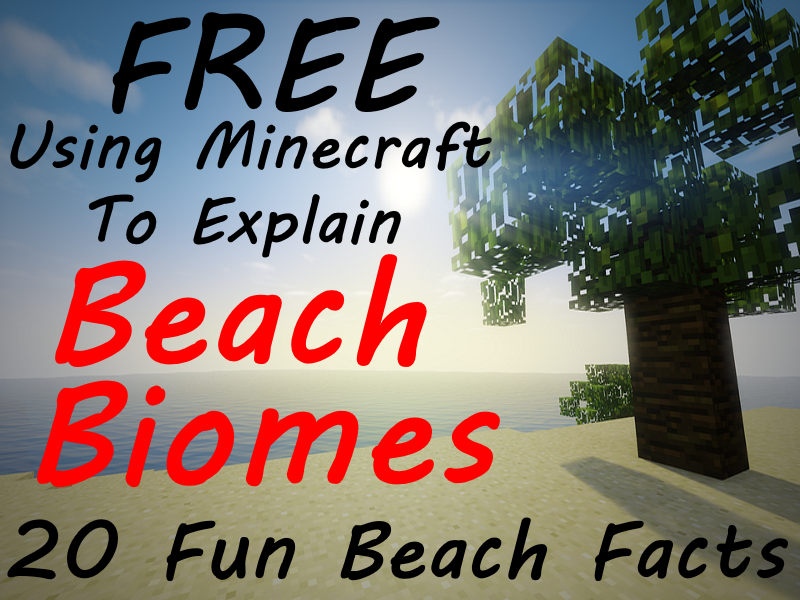 FREE Minecraft Beach 20 Fun Facts