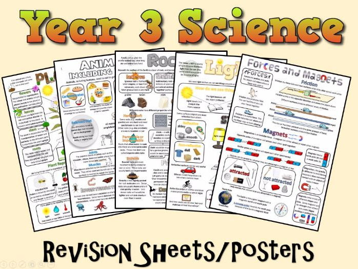 Year 3 Science Posters/Revision Sheets