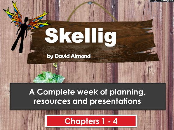 SKELLIG  COMPLETE WEEK OF PLANNING, RESOURCES AND PRESENTATIONS