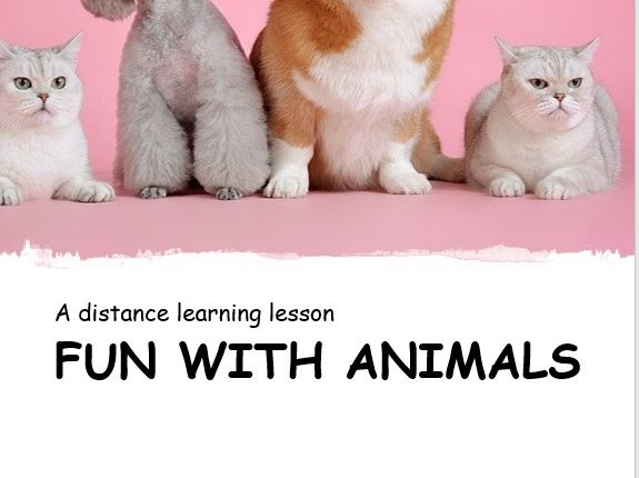 Fun with Animals. Distance Learning