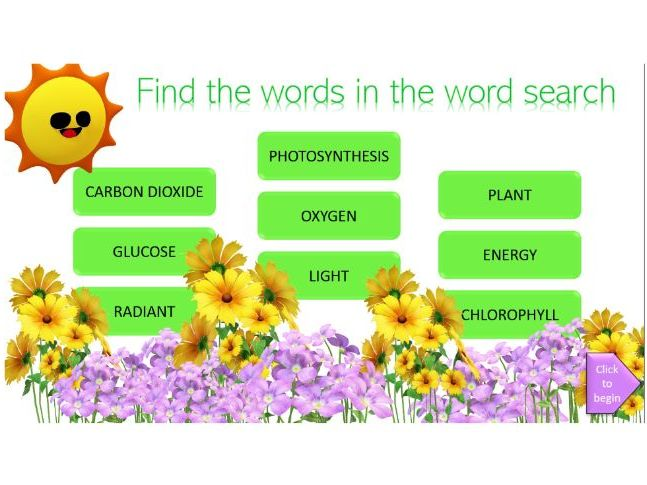 Interactive digital word search on photosynthesis