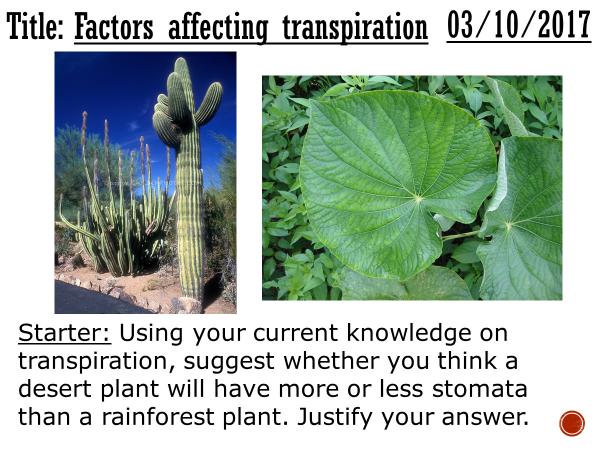 Factors affecting transpiration - complete lesson (KS4)