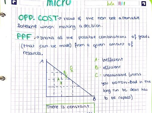 AS/A-Level Year 1 Micro Economics Notes
