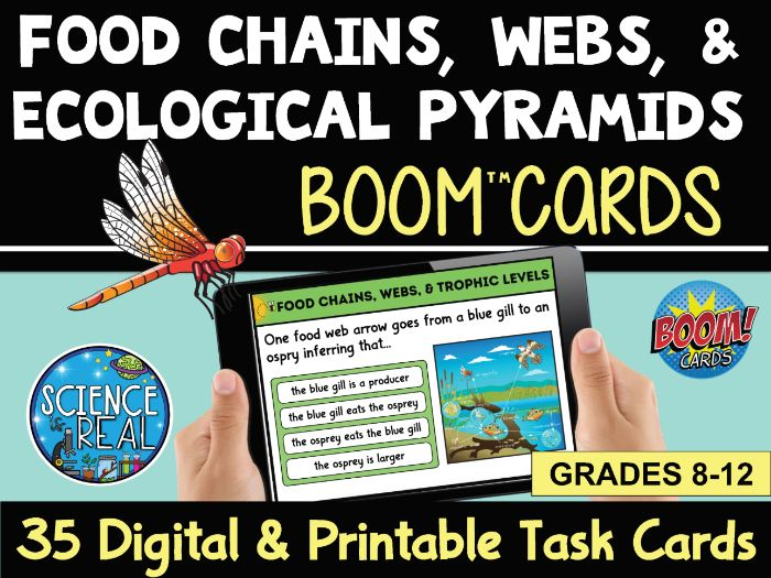 Food Chains, Webs, & Pyramids Boom Cards