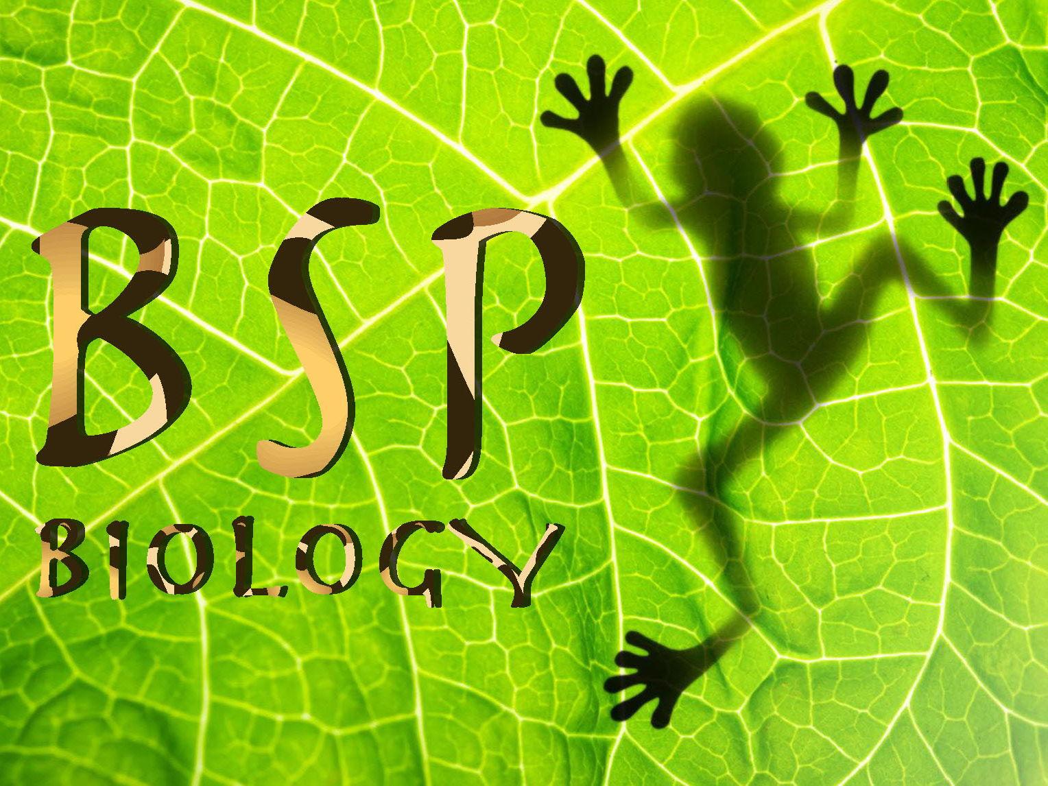 AQA GCSE BIology Trilogy Topic 2: Organisation bundle