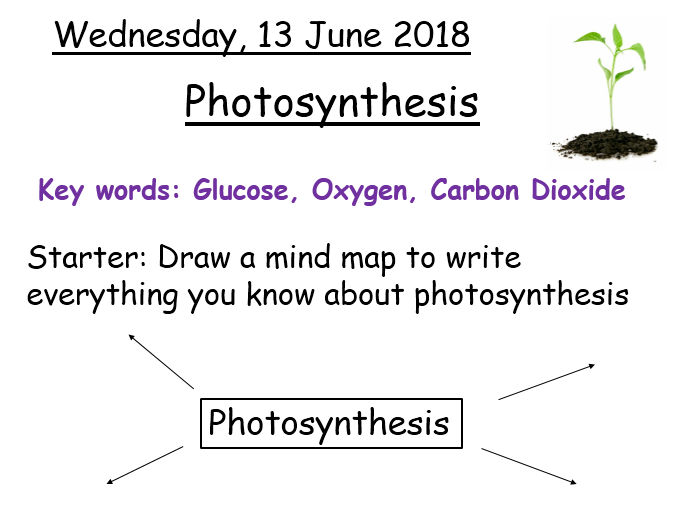 Photosynthesis - Year 8 Activate science