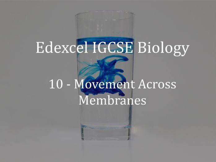 Edexcel IGCSE Biology Lecture 10 - Movement Across Membranes