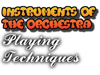 Orchestral Instruments - Playing Techniques