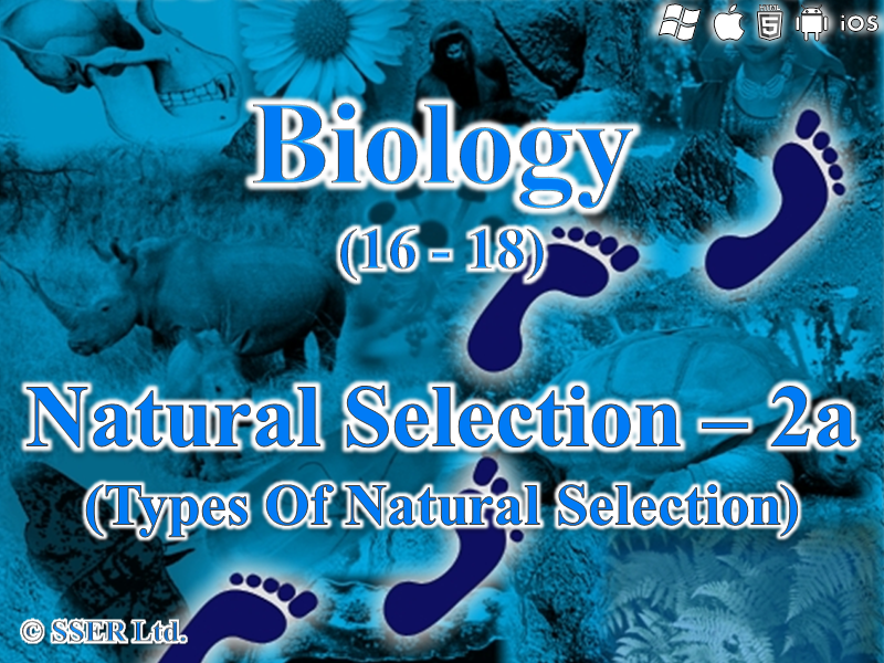 3.4.4 Natural Selection 2a - Types