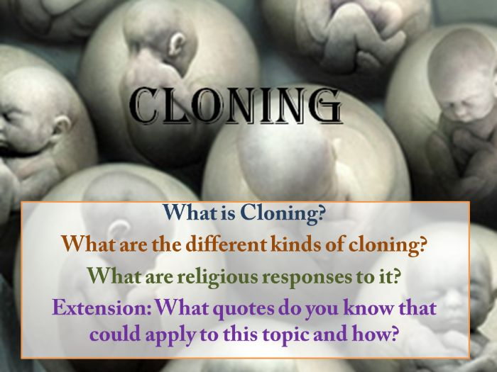 Medical Ethics 6: Cloning (with cover lesson)