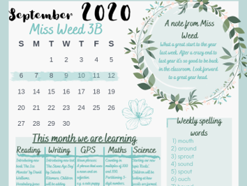 Weekly brief 2020 academic year - editable