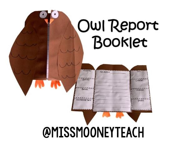 Owl Report Booklet Template