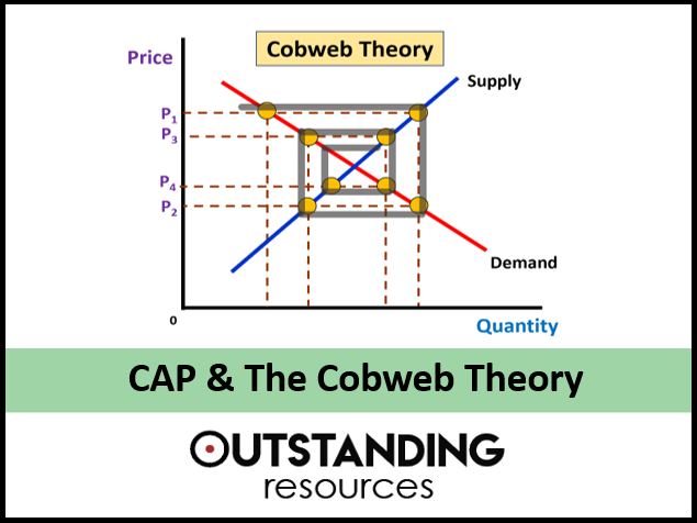 Economics: The Common Agricultural Policy (The CAP) & The Cobweb Theory