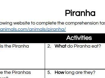 Understanding Piranhas - Amazon Rainforest