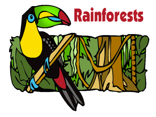 Rain Forests - Spelling - Board Game