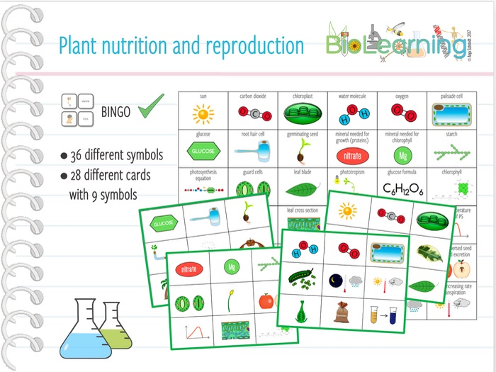 Plant nutrition and reproduction - Bingo Cards (KS3/KS4)