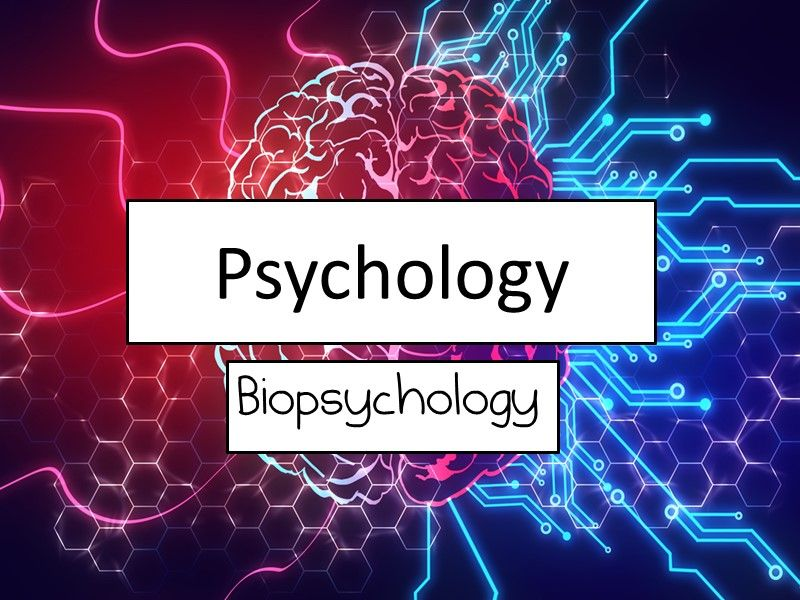 Biopsychology full- Every lesson plus a written scheme of work to accompany