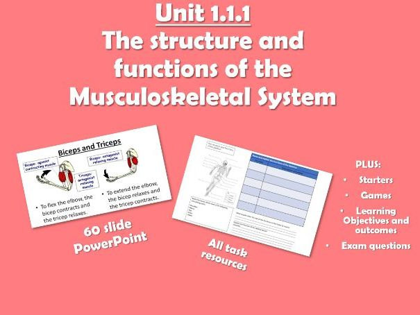 AQA GCSE PE (2016) 1.1.1 The Structure and Functions of the Musculoskeletal System - Unit of Work