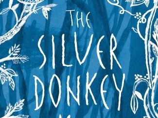 The Silver Donkey KS2 Novel Study, Writing tasks and Resources
