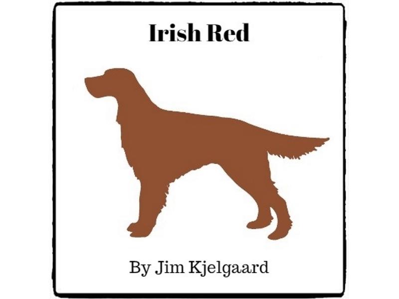 Irish Red - (Reed Novel Studies)
