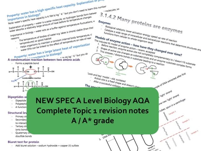 NEW AS Biology AQA topic 1 BIOLOGICAL MOLECULES revision book - A*/A grade