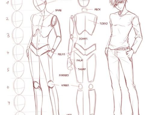 Manga Proportion Drawings. 6 Worksheets.