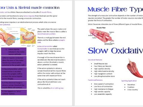Muscular and Skeletal Systems Booklet AS PE OCR