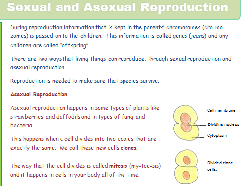 B13.1 Sexual and Asexual Reproduction  SEN / Literacy / Lower foundation (NEW SPEC)