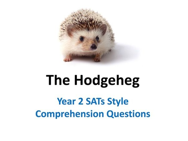 The Hodgeheg SATs Style Comprehension Questions
