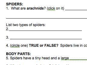 Spiders PebbleGo Webquest