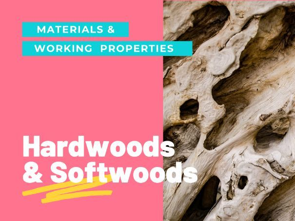 Hardwoods and softwoods - PPT GCSE DT