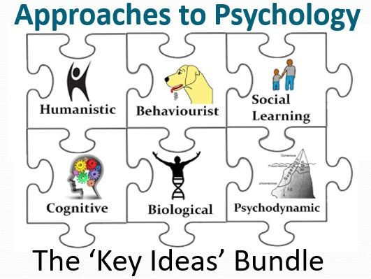 Approaches to Psychology: The 'Key Ideas' Bundle