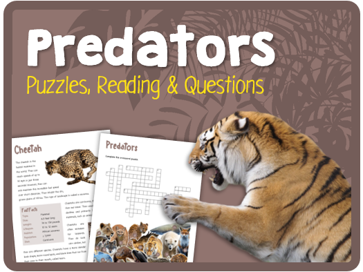 Predators (Puzzles, reading & questions)