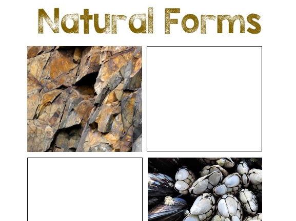 Natural Form Worksheet #1
