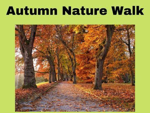 Autumn Walk Writing Frame