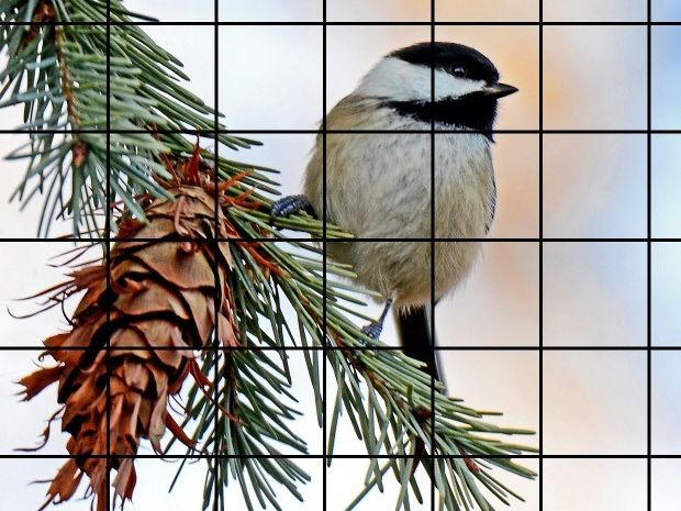 Christmas Grid Drawing Activities