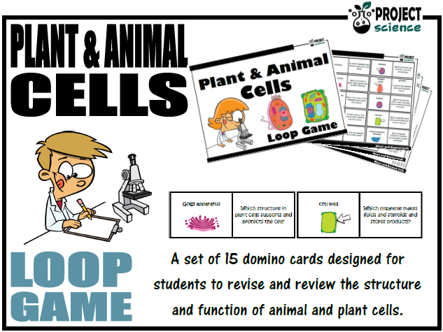 Plant and Animal Cells Loop Game
