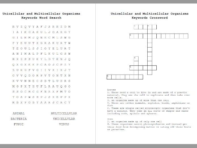 Unicellular and Multicellular Crossword & Word Search Worksheet (Organisms)