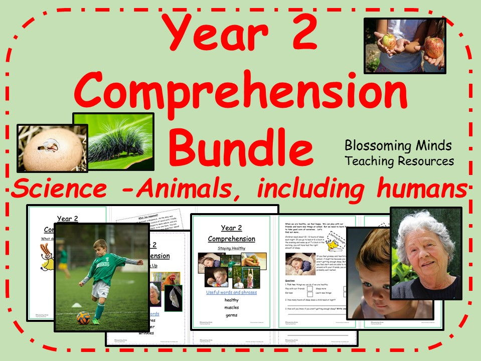 Year 2 Reading Comprehension Bundle - Animals and humans (science)