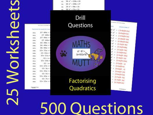Factorising Quadratics (Drill Questions )