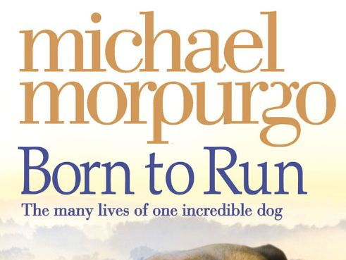 Born to Run by Michael Morpurgo: Guided Reading Plans