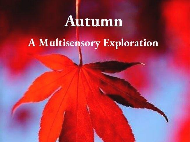 Autumn A Multisensory Story