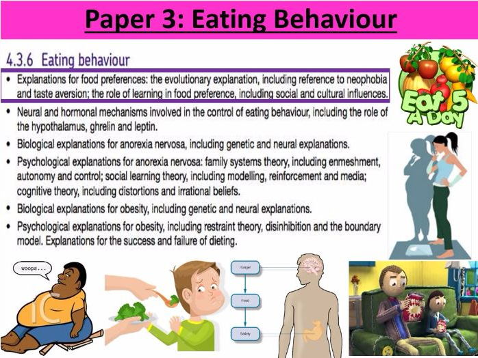 a review of the evolutionary explanation of anorexia The quarterly review of biology, march 2012, vol 87 anorexia (reduced appetite) require an evolutionary explanation.