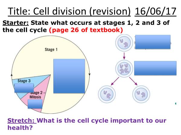 AQA B2 (cell division) revision broadsheet