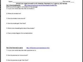 Unicellular organism webquest: Amoeba, Paramecium, Euglena, and Volvox