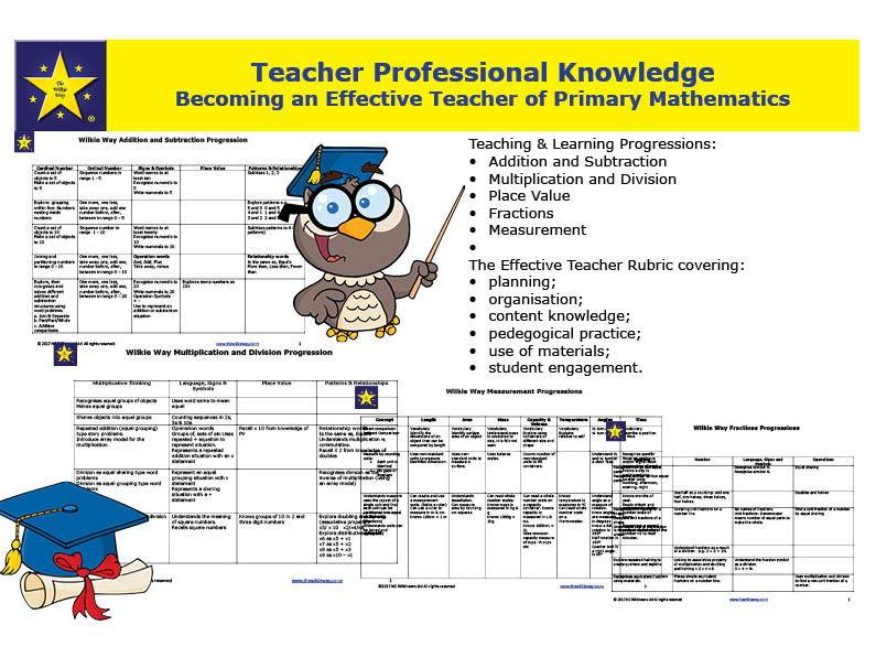 Becoming an Effective Primary Mathematics Teacher